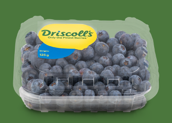 Blueberry Driscoll's