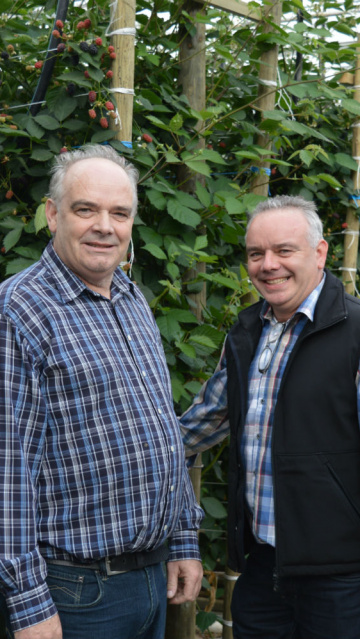 Meet our growers Jan and Alfons Diepstraten