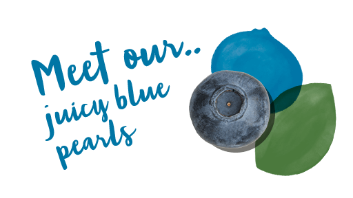 Meet our<br>juicy blue<br>'pearls'